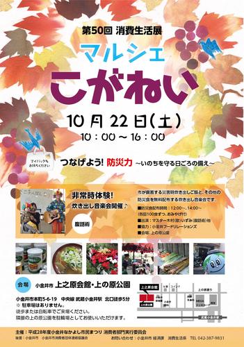 50_shouhiseikatsu_0920.jpg
